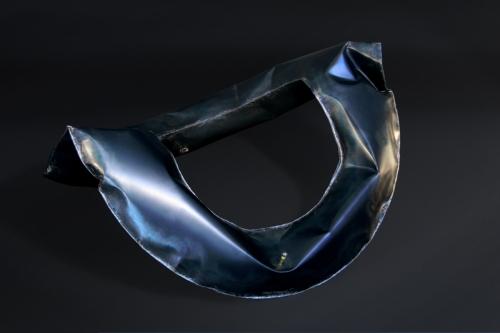 Ring Carbonstahl 2006